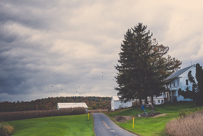 Bushey School Road | York Springs, Pennsylvania | 2014