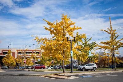 Autumn 2015 in Old Town Manassas, Virginia