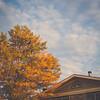 October 2015 // Main Street in Middleburg, Virginia