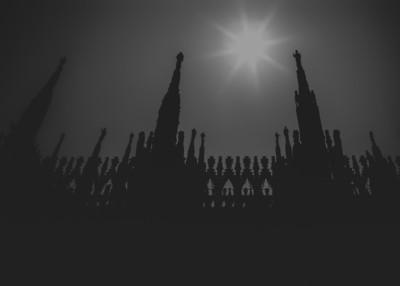 """""""Reaching Toward the Sun"""""""