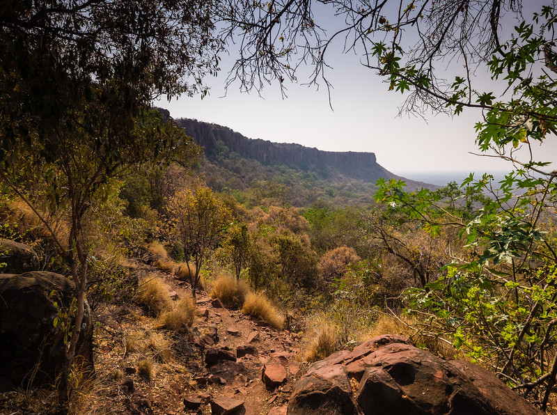 "Waterberg National Park is like an island in the sky, surrounded by precipitous red sandstone cliffs. It reminds me of Conan Doyle's ""Lost World"""