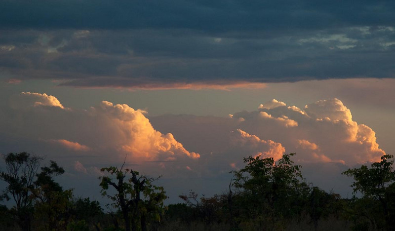 Evening clouds in the Okavanga Delta
