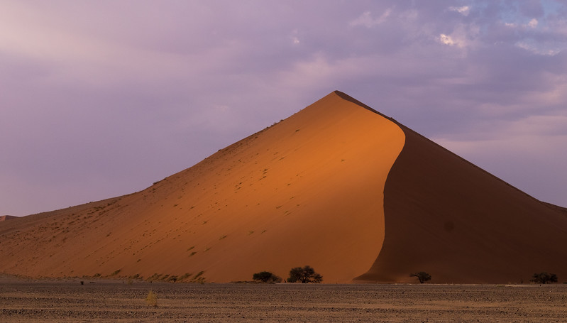 Towering Dunes at Sossusvlei at Dawn