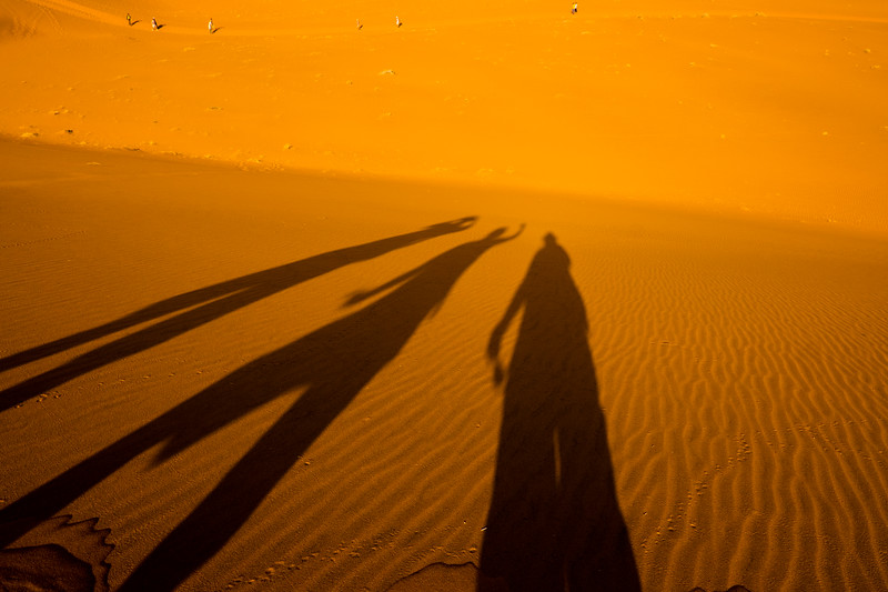 Dune Shadows, Sossusvlei