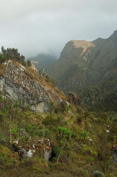 Looking down the Mubuku valley)