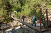 Kurt Schaffer Bridge over the Mubuku stream.