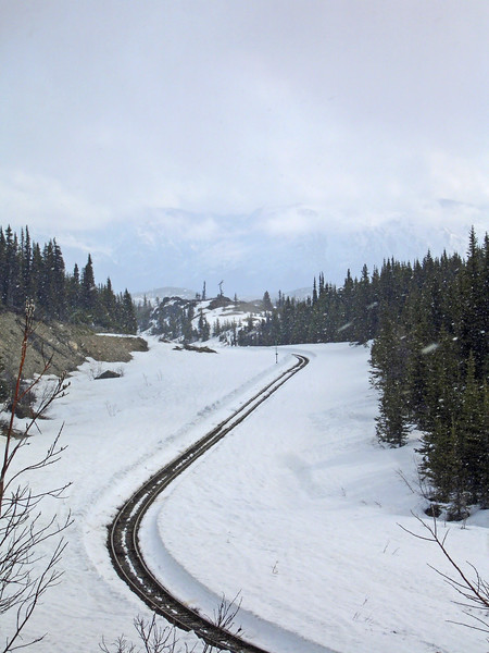 Again we found train tracks curving through the scenic beauty of the Yukon.