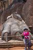 Lions Claw at Sigiriya