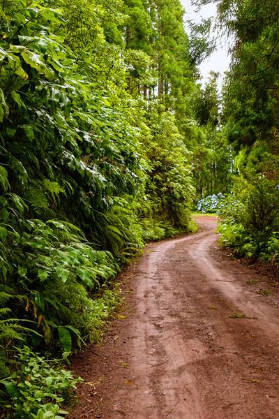 Road EN 1-2a