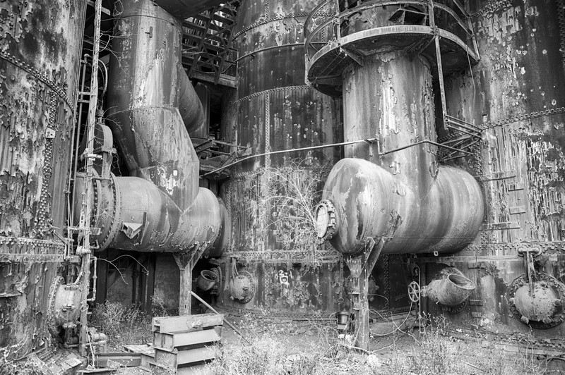 Nature taking back at Bethlehem Steel