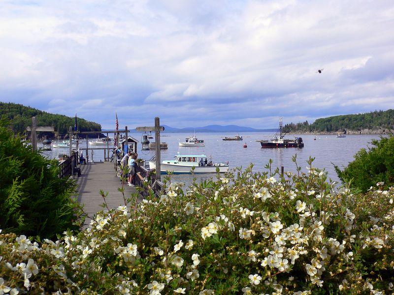 Maine Summer 2005 - 0024