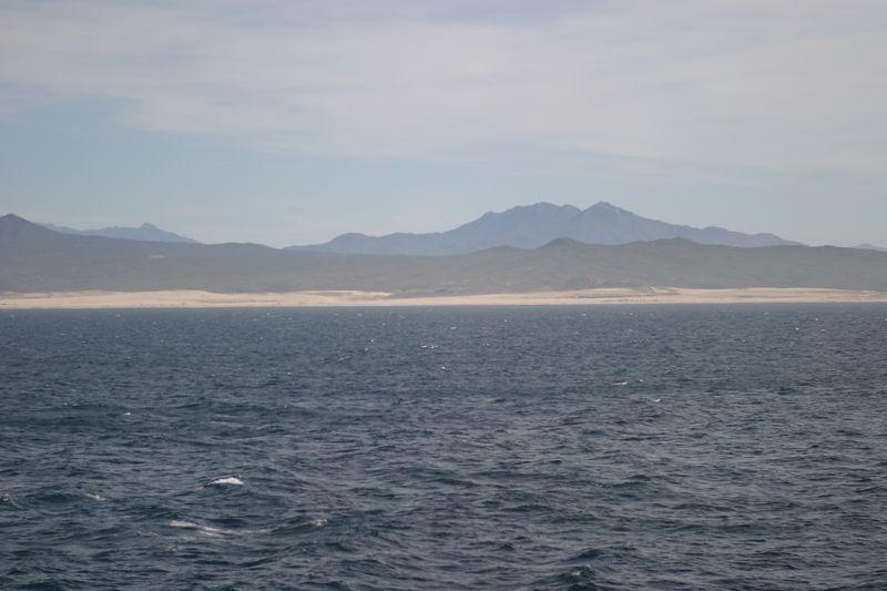 Cabo San Lucas- (140)