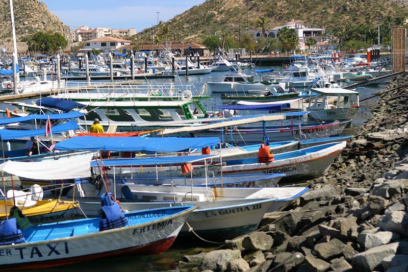 Cabo San Lucas- (104)