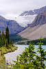 Bow Lake and Crowfoot Glacier, Banff National Park