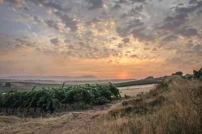 Camino Morning
