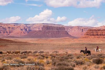 Navajo Cowboys