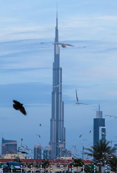 Burj Khalifa as seen from Jumeira Beach.