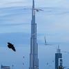 Burj Khalifa as seen from Jumeira Beach.
