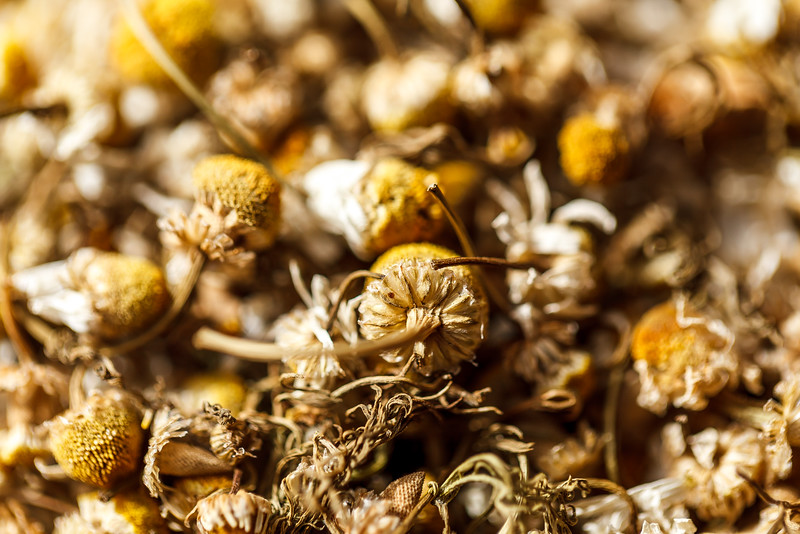 Macro shot of yellow dried flower as captured in Dubai's Spice Souq.