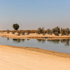 A small island is seen in the middle of a small lake surviving the heat in the desert of Al Qudra, Dubai, UAE with its reflection in the lake water.