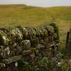 Stone wall, Herding Hill Farm, Haltwhistle, England.