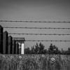 Dachau Concentration camp, north wall barb wire