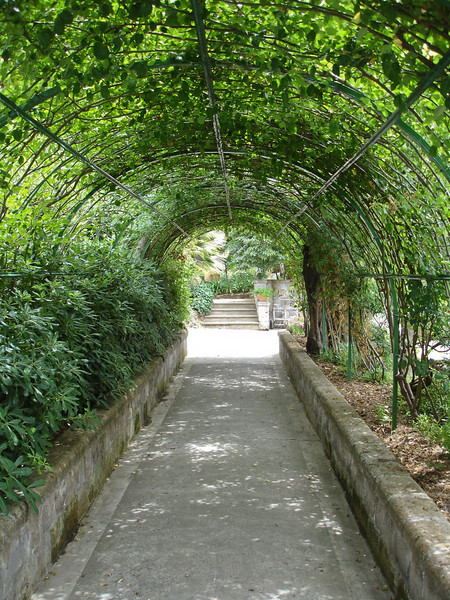 A Sorrento Italy hotel was the location of this vine tunnel. This was just part of the beautifully landscaped grounds.