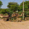 A Rajasthan tractor.