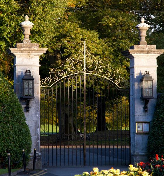 Into Adare Manor