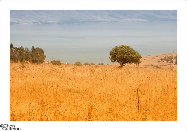 10-06-2010_11-37-16-Edit