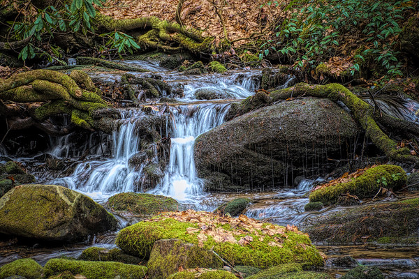 North Carolina Mountain Stream
