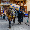 Donkeys and mules are the only means of transport along the crowded narrow lanes of Fez medina.