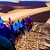 Camel train, going down.