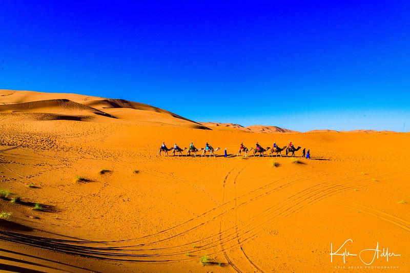Glorious Sahara landscape.