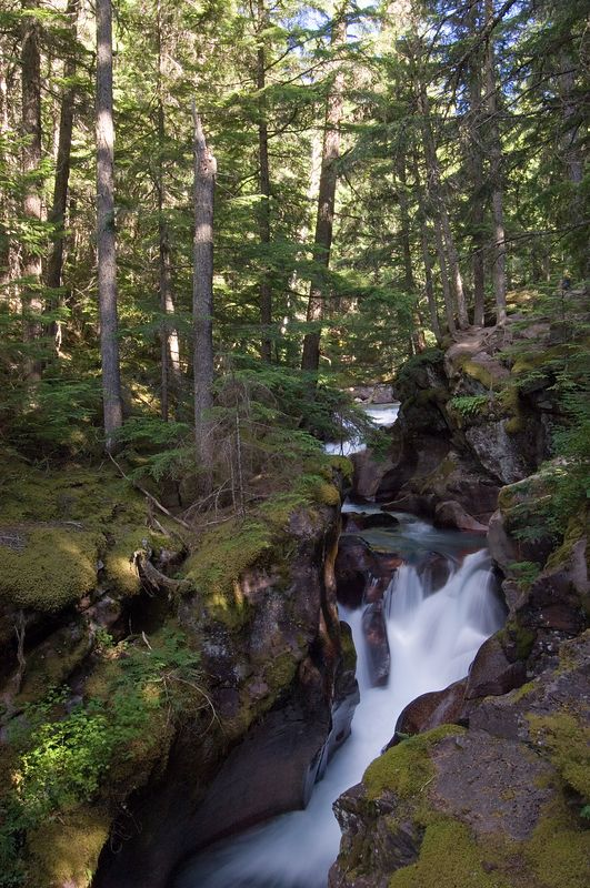 Waterfalls on the way to Avalanche Lake.