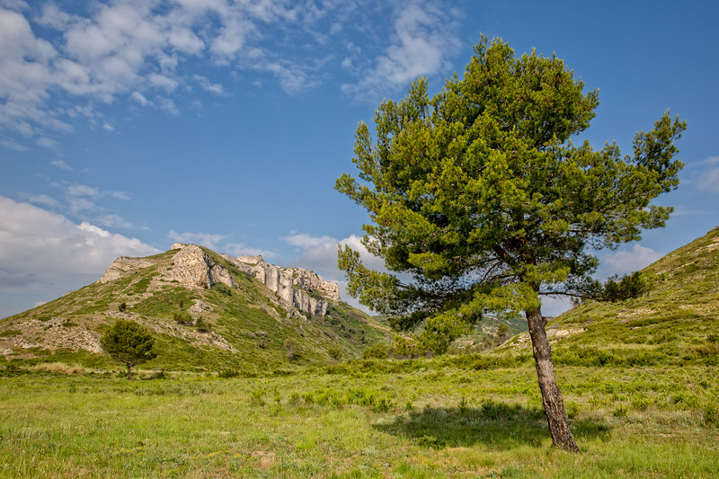 Hill in Grand Vallon Provence