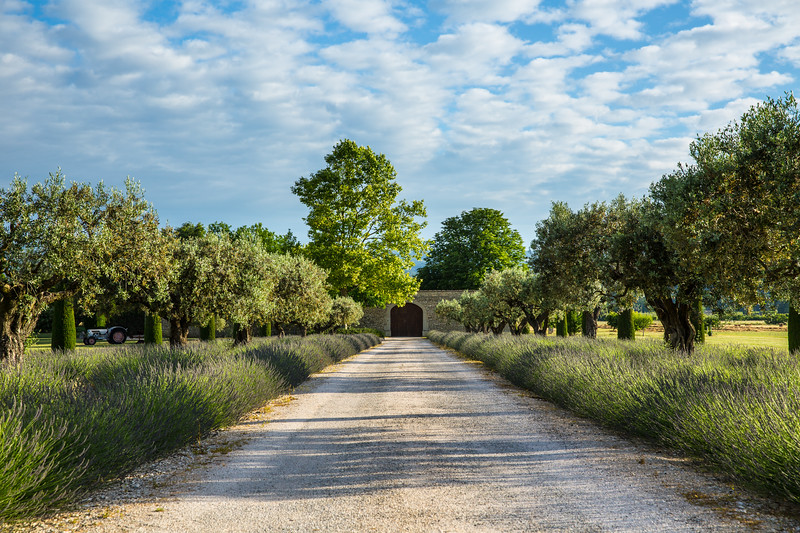 Winery in Provence