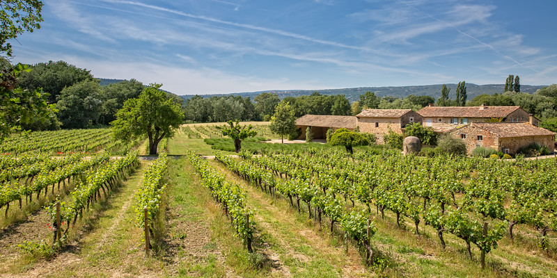 Stone farmhouse in vineyard
