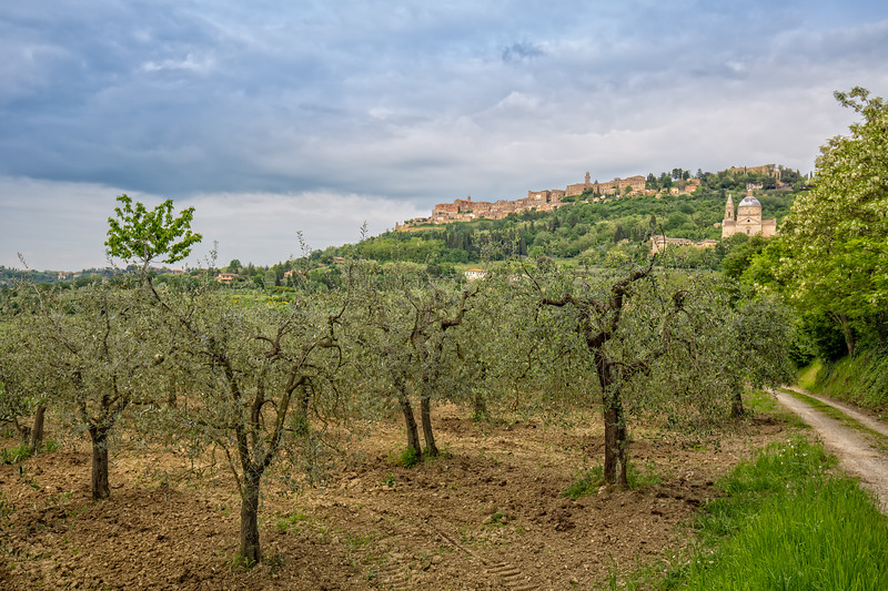 View of the medieval village of Montepulciano.