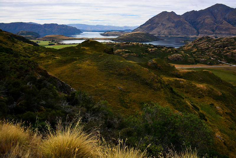 Lake Wanaka from top of Diamond Lake trail.