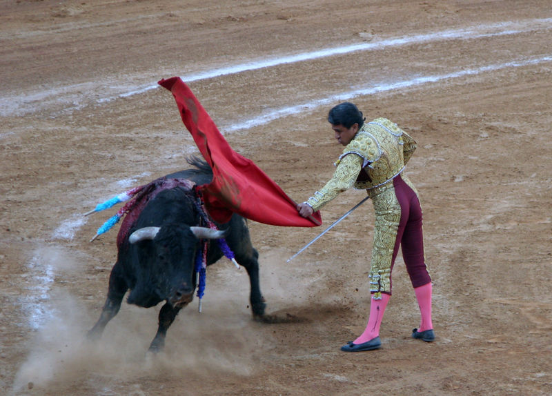 Mejia fights with the muleta