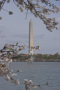 Washington Memorial and Potomac River, Washington DC