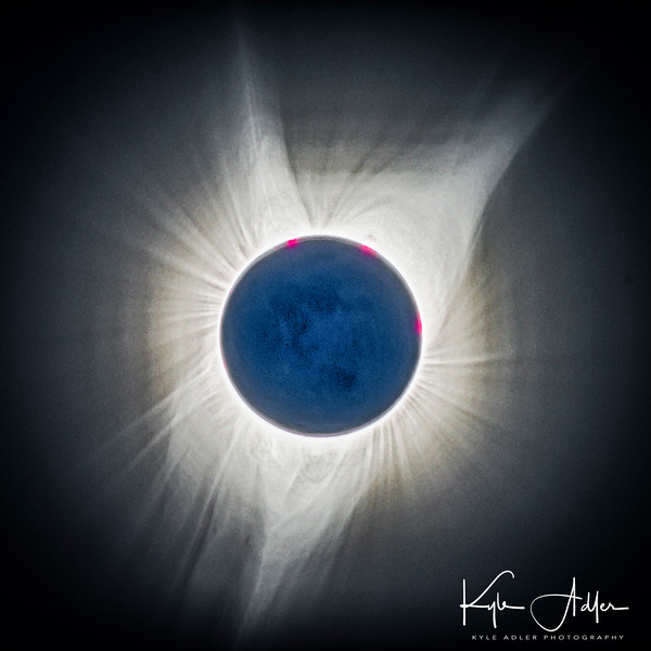 This lovely HDR composite of totality shows the corona with prominences and streamers, but also captures an unusual phenonemon: earthshine during totality.  The sun's corona is so much brighter than the new moon that during totality the moon's surface cannot be seen.  This image captures some of the moon's surface detail as illuminated by the reflection of the sun off the earth.