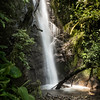 Intag cloud forest waterfall