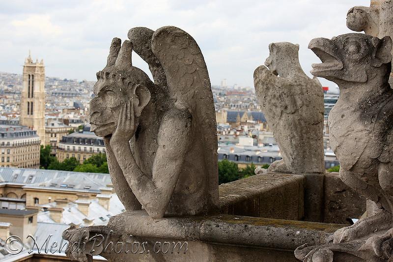 Notre Dam, Paris, France, July 2009.