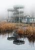 Lookout at Marsh Boardwalk in the fog
