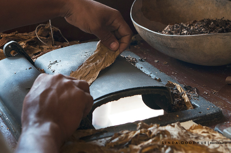 Handmade cigars in Dominican Republic