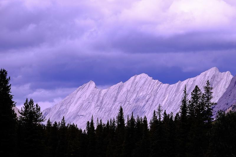 Queen Elizabeth Range; Jasper National Park