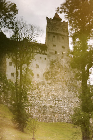 Bran Castle Reflection