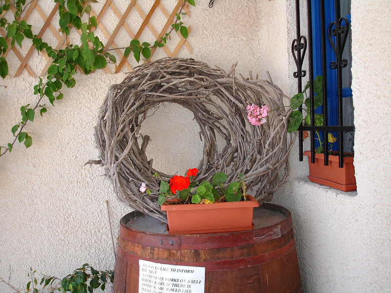 On the Greek island of Santorini, because of the lack of water and the volcanic soil, the grape vines are rolled in this manner to hold water longer.